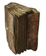 codex-mariendalensis_180_thumb