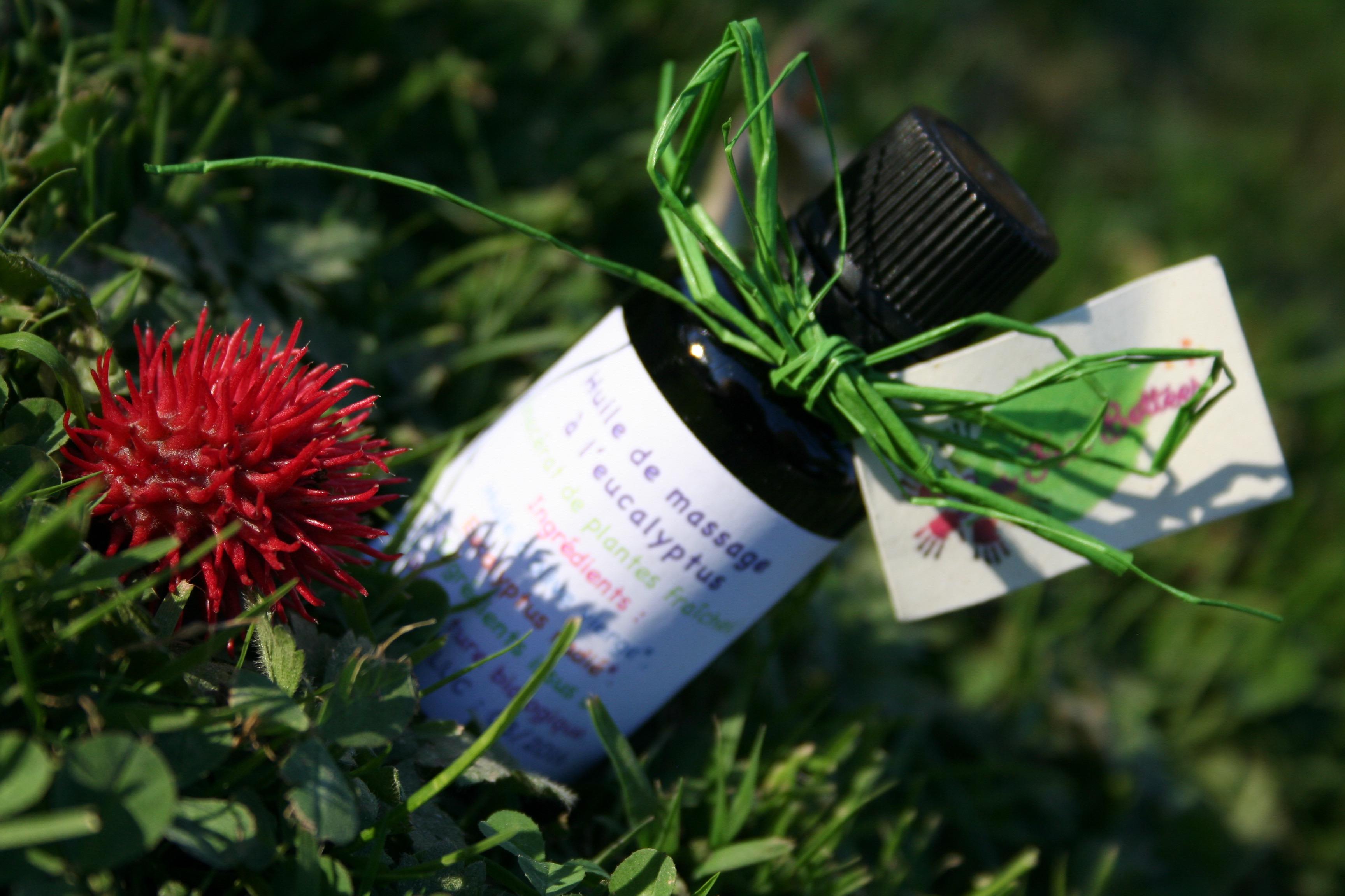Huile massage eucalyptus radié 30ml